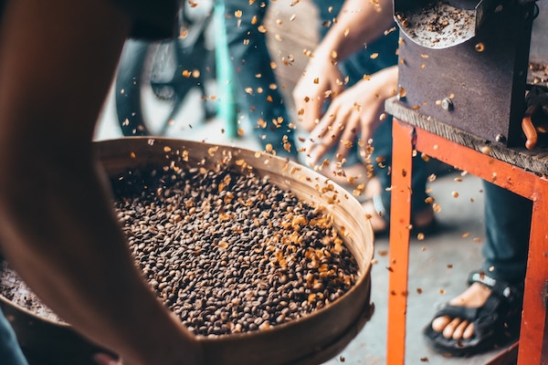 coffee beans being mixed in large sorting/mixing container