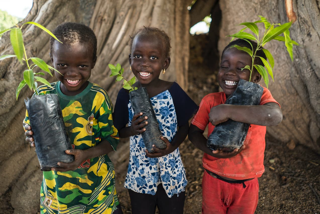 three smiling children each holding a small tree ready to be planted